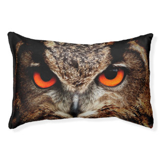 Eagle Owl Small Dog Bed