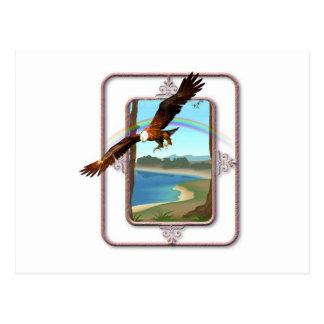 Eagle Rainbow Postcard