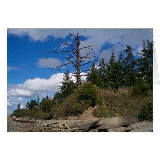 Eagle Tree Card