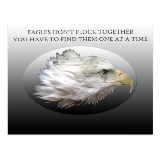 Eagles Don't Flock Together Postcard
