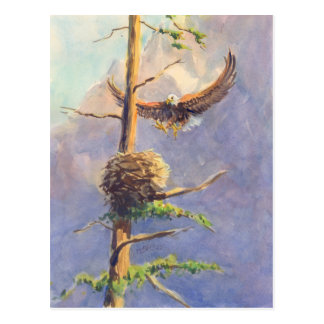EAGLE'S NEST by SHARON SHARPE Postcard