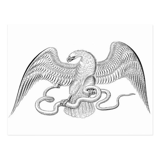 Eaglewith snake post card