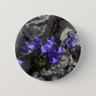 Earleaf bellflower (Campanula cochleariifolia) 2 Inch Round Button