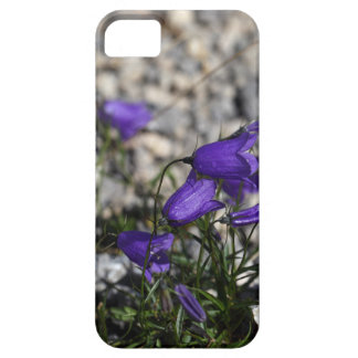 Earleaf bellflower (Campanula cochleariifolia) Case For The iPhone 5