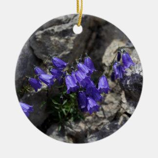 Earleaf bellflower (Campanula cochleariifolia) Ceramic Ornament