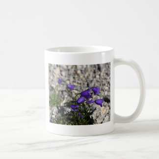Earleaf bellflower (Campanula cochleariifolia) Coffee Mug