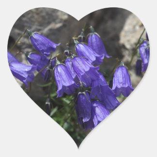 Earleaf bellflower (Campanula cochleariifolia) Heart Sticker
