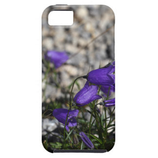 Earleaf bellflower (Campanula cochleariifolia) iPhone 5 Cases