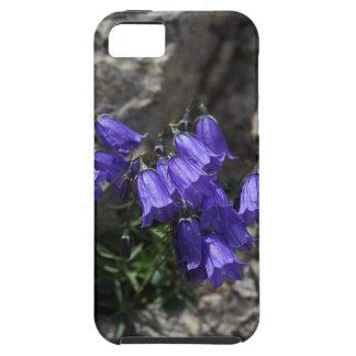 Earleaf bellflower (Campanula cochleariifolia) iPhone 5 Covers