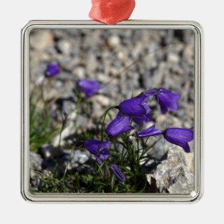 Earleaf bellflower (Campanula cochleariifolia) Metal Ornament
