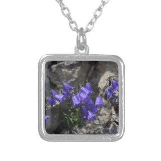 Earleaf bellflower (Campanula cochleariifolia) Silver Plated Necklace