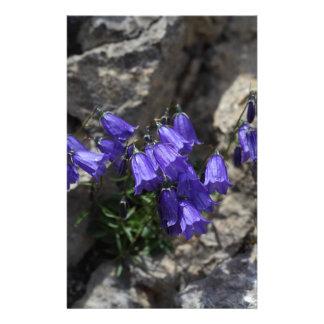 Earleaf bellflower (Campanula cochleariifolia) Stationery