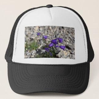 Earleaf bellflower (Campanula cochleariifolia) Trucker Hat