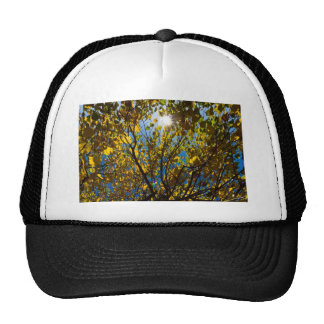 Early Autumn Mesh Hat