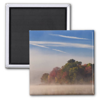 Early Autumn Square Magnet
