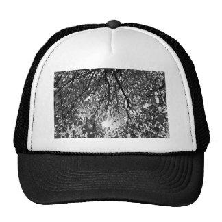 Early Autumn Monochrome Hats