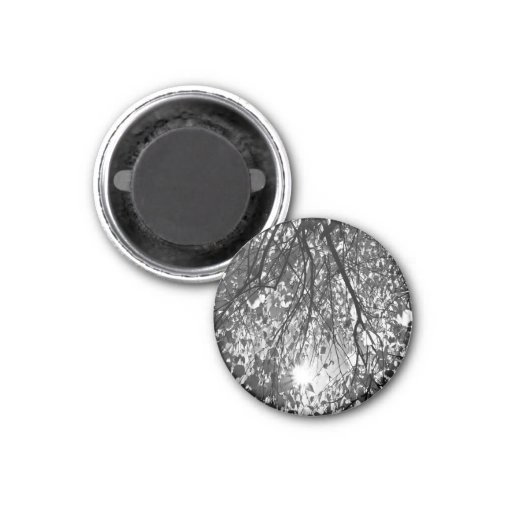 Early Autumn Monochrome Refrigerator Magnet
