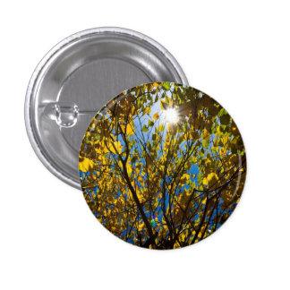 Early Autumn Pin