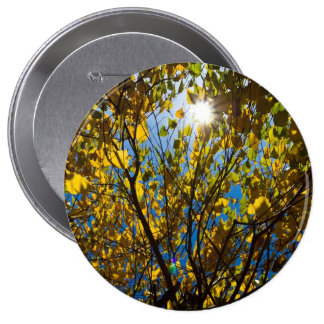 Early Autumn Pinback Button
