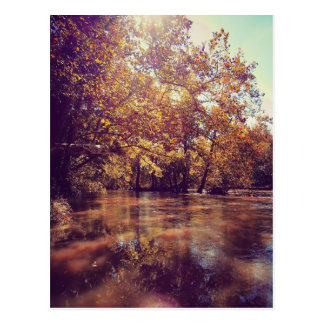 Early Autumn River Postcard