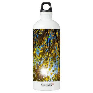 Early Autumn SIGG Traveler 1.0L Water Bottle