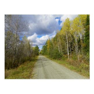 Early Autumn Trail Postcard