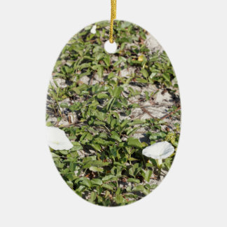 Early Beach Sand Morning Glories Ceramic Oval Ornament