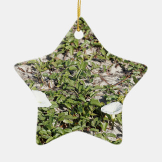 Early Beach Sand Morning Glories Ceramic Star Ornament