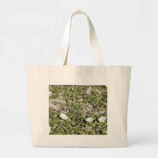 Early Beach Sand Morning Glories Large Tote Bag