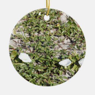 Early Beach Sand Morning Glories Round Ceramic Ornament