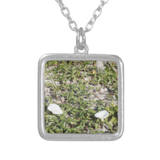 Early Beach Sand Morning Glories Silver Plated Necklace
