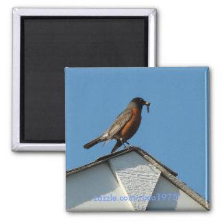 Early Bird Magnet