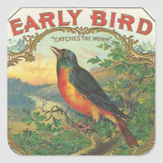 Early Bird Square Sticker