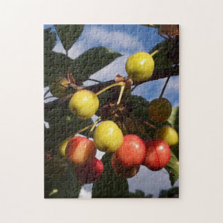 Early Cherries Puzzle