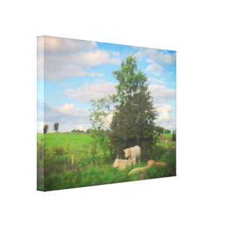 Early Evening - West Ireland Canvas Print