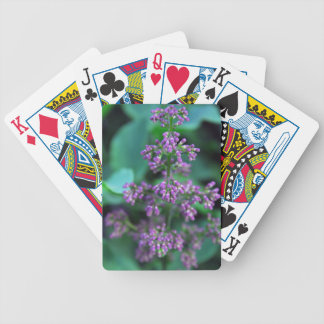 Early Morning Lilacs Bicycle Playing Cards