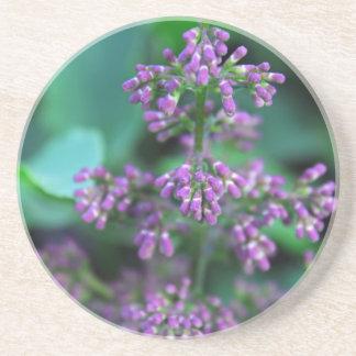 Early Morning Lilacs Coaster