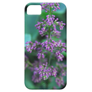 Early Morning Lilacs iPhone 5 Case