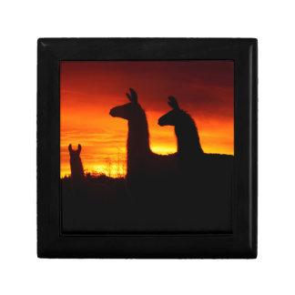 Early Morning Llamas Gift Box