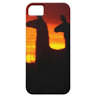 Early Morning Llamas iPhone 5 Case