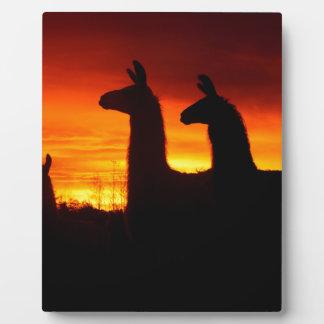 Early Morning Llamas Plaque