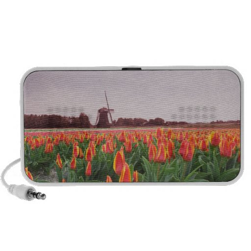 Early Morning Orange Tulips Flowers Field Windmill iPhone Speaker