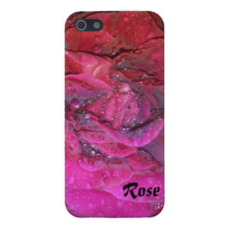 Early Morning Rose iPhone 5 Covers