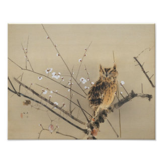 Early Plum Blossoms by Nishimura Goun, Owl Art Poster