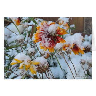 """""""Early Snow"""" Greeting Card"""