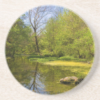 Early Spring Along Creek Near Nashville Drink Coaster