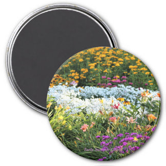 Early Summer Colors! Magnet