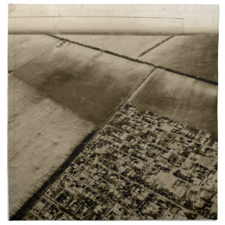 Earth from the air napkin