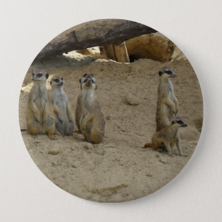 Earth male family 4 inch round button