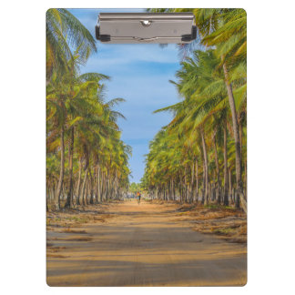 Earth Topical Road Porto Galinhas Brazil Clipboard